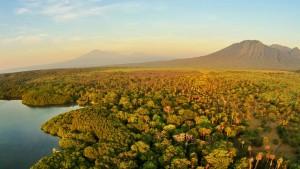 Taman Nasional Baluran, Tempat Wisata Dekat Kawah Ijen