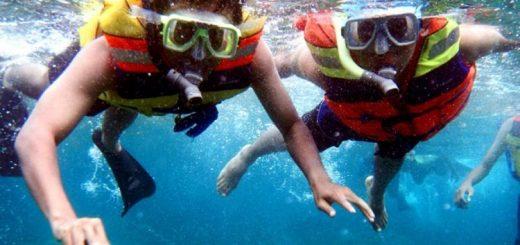 Paket Wisata Bromo | Snorkeling Gili Ketapang