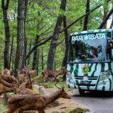 Paket Wisata Bromo Taman Safari Prigen