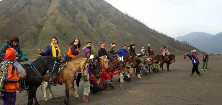 Sewa Kuda Bromo, Harga Sewa Kuda Di Gunung Bromo