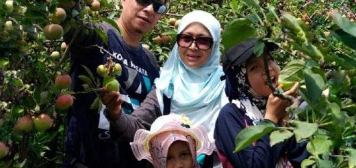 Pakej Percutian ke Malang Indonesia