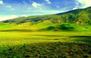 Perbedaan Padang Savana dan Bukit Teletubbies Bromo
